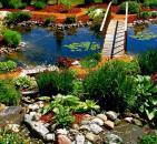Выбор растений для сада