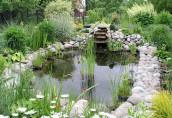 Как украсить ландшафт с помощью водоема