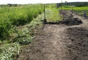 Подготовка земельного участка к созданию ландшафтного дизайна