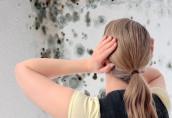 Большая влажность в квартире – что делать