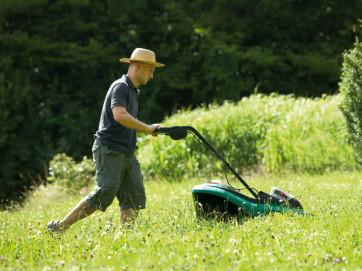 Где лучше купить садовую технику
