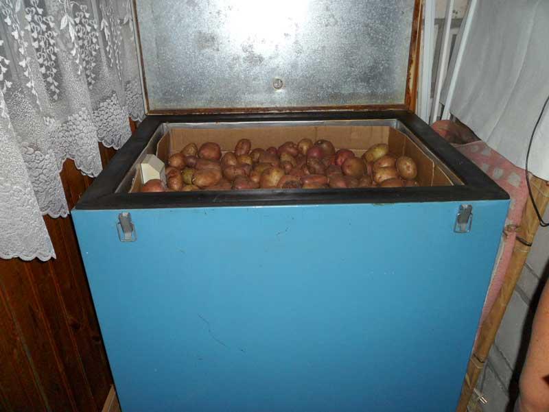 Как сделать погреб для хранения овощей на балконе.